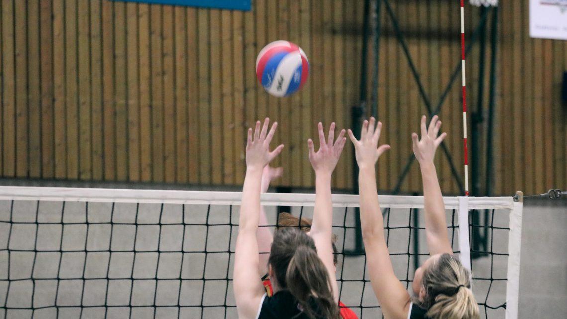 Dames volleybalschoenen